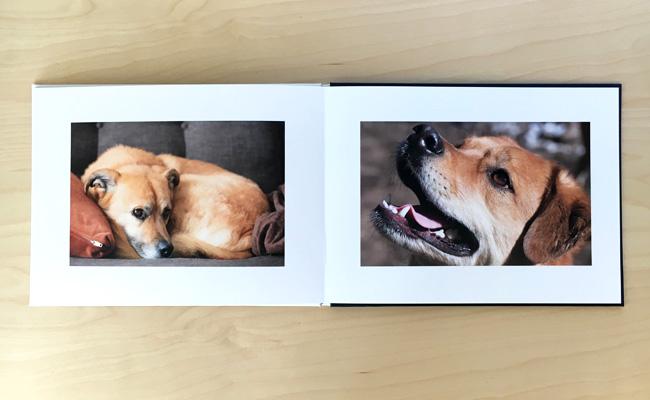 photobook-12