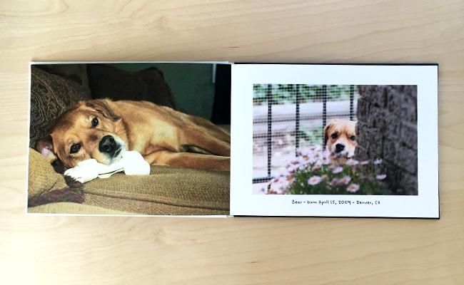 photobook-3